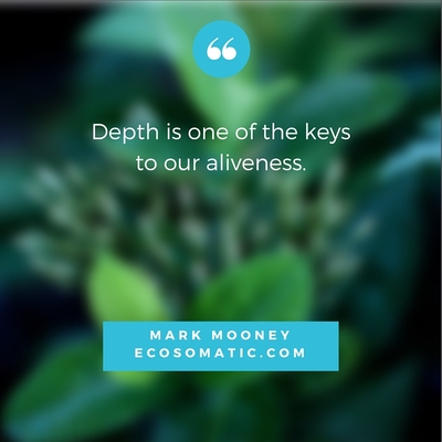 """""""Depth is one of the keys to our aliveness."""" Mark Mooney"""